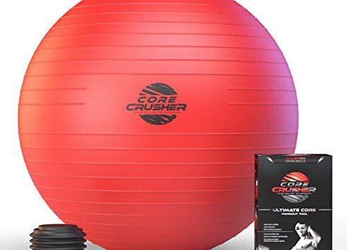 mit kostenlosem Bonus Weihnachts Ebook mit 20 Core Crushing Übungen & Workouts – Stabilität & Tonus – der Beste für Bauchmuskeln – Schweizer Fitness-Ball 65cm mit Pumpe – für Cross Fitness – Yoga & Pilates