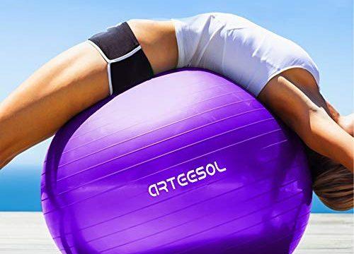 Arteesol Gymnastikball 65cm / 75 cm inkl. Pumpe Anti-Burst Sitzball für Yoga Pilates Fitness Physiotherapie 5 Farben Lila, 45cm