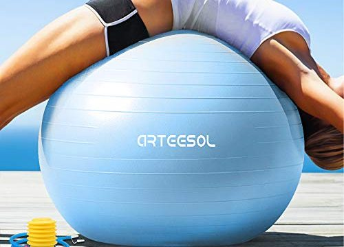 arteesol Gymnastikball Pilates Ball 45cm / 55cm / 65cm / 75 cm inkl. Pumpe Anti-Burst Sitzball für Yoga Exercise Fitness Physiotherapie 5 Farben Aqua, 55cm